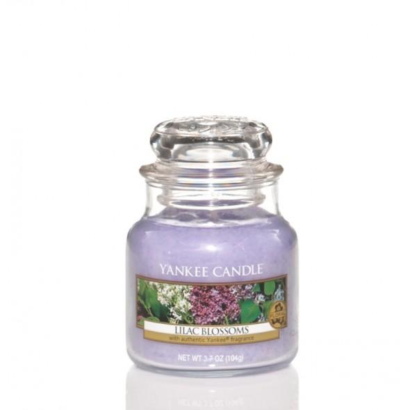 Lilac blossoms - Petite Jarre