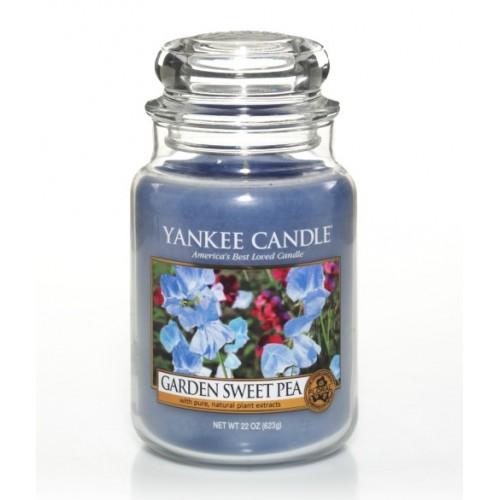 Garden Sweet Pea - Grande Jarre