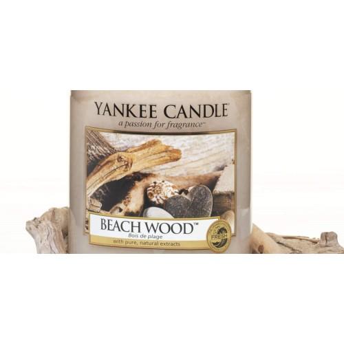 Beach Wood – Petite Jarre