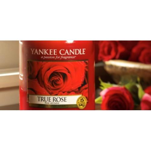 True Rose – Petite Jarre